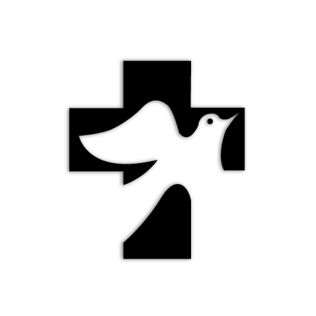 project_vida_cross